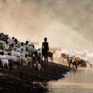 omo-1_murulle_livestock-water_2009sep26_0259-edit